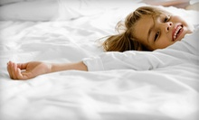$50 for $200 Toward a Twin or Full Mattress, or $80 for $350 Toward a Queen or King Mattress at Princeton Mattress
