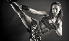 10 or 20 Adult MMA Fitness Classes or One Month of Children's Classes at Bay Area Fight Academy (Up to 85% Off)