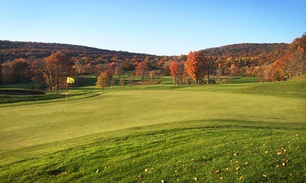 18-Hole Round of Golf for 2 or 4 with Cart Rental and Range Balls at Laurel View Country Club (Up to 41% Off)