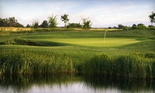 18 Holes of Golf with Cart Rental for Two or Four at Wild Wings Golf Club (Up to 55% Off)