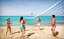 $59 for a 10-Week Volleyball-League Team Registration with Beer Each Week at The Blue Jay Bar & Grill ($131 Value)