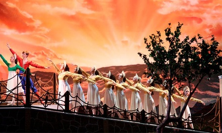 Youth American Ballet:
