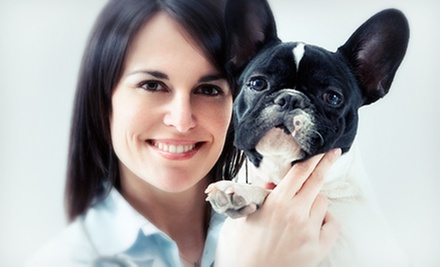 Exam and Grooming for Small, Medium, Large, or Extra-Large Dog, or Cat at Scarbrough Animal Hospital (Up to 67% Off)