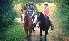 Saddle-Up Adventure Trail Ride for One or Two or One- or Three-Month Membership to Riding Star Ranch (Up to 54% Off)