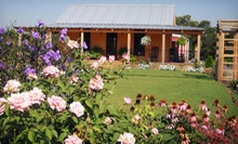 $20 for a Winery Tour for Two with Tastings, Stemware, and Wine Stopper at Hidden Meadow Vineyard ($60 Value)
