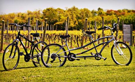 Long Island Winery Groupon