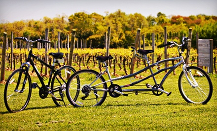 Signature Winery Bike Tour with Gourmet Picnic Lunch or A La Carte Tour from Vintage Bicycle Tours (Up to 53% Off)