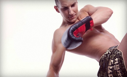 10 or 20 Cross-Training, Tae Bo, Kickboxing, or MMA Classes at Paladin MMA Academy in Hialeah (Up to 80% Off)