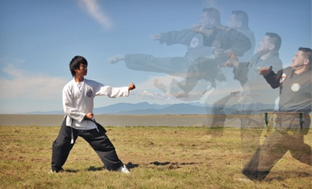 10 or 20 Classes at Lok's Hapkido School (Up to 90% Off)