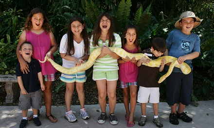 One Week of Summer Camp for Kids Ages 5–12 at Jungle Island (35% Off). Eight Sessions Available.