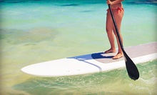 One- or Three-Hour Paddleboard Rental from Sarasota Wind and Water Adventures (Up to 52% Off)