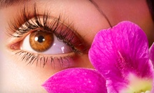 One or Two Sets of Cosmopolitan Eyelash Extensions or One Set of Vogue Eyelash Extensions at Lash Cosmo (Up to 60% Off)