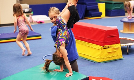 Eight-Week Gymnastics, Karate, or Art Class at Olmsted Performing Arts (Up to 55% Off)