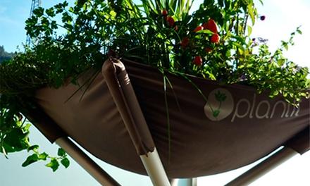 Plantit: kit para horta caseira Plantit com opção de juntar kit PlantitYourself com capuchinha e ervilha desde 49,90€