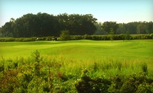 Round of Golf with Cart Rental for Two or Four at White Pines Golf Course (Up to Half Off)