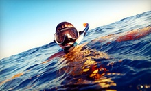 High-Speed Boat Tour and Sea-Life Snorkeling Adventure for Two or Four with Custom Charters (Up to 70% Off)