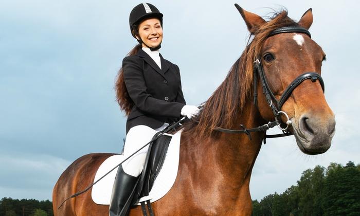 Società Ippica Novarese - Novara: 3, 5 o 7 lezioni di equitazione con monta all'inglese per adulti e bambini da 24,90 €