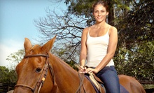 60-Minute Trail Ride for Two or Four from A Ranch 394, Inc. in Chicago Heights (Up to Half Off)
