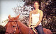 Horseback-Riding Lessons or Therapy at Equine Tranquility Wellness Center (Up to 65% Off). Four Options Available.