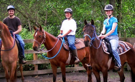 Horseback Ride for One or Two, or Horseback Ride with Intro Lesson at Morris's Shadow Mountain Stables (Up to 55% Off)