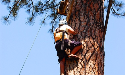 Half-Day Challenge Ropes Course and Ziplining at Mother Lode River Center (Up to 39% Off)