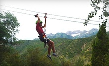 $30 for a Zipline Canopy Tour from Max Zipline ($60 Value)