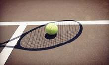 Two, Four, or Six 60-Minute Small Group Lessons at Tennis In Orlando (Up to 58% Off)
