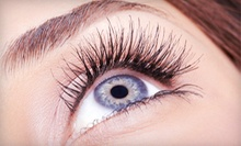 Full Set of Eyelash Extensions with Optional Touchup at Lash Envy & Day Spa (Up to 76% Off)