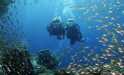 Kent diving coupon