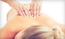 $30 for Exam, EMG Scan, and One-Hour Massage at Ellison Chiropractic in Eagle ($145 Value)