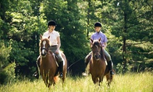 $39 for Two Private Horseback-Riding Lessons at Hidden Hills Farm & Saddle Club ($80 Value)