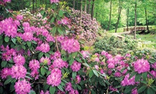 Visit for Two or Four to The Holden Arboretum in Kirtland (Up to Half Off)