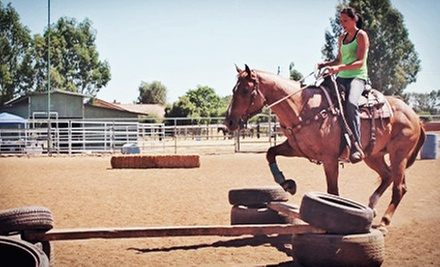 $35 for a Basic Lesson and Trail Ride for Two or Horsemanship Class for Two at ML Performance Horses ($70 Value)