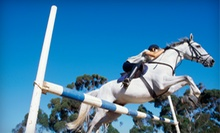 Two Private or Five Group Horseback-Riding Lessons at Hunter Ridge (Up to 52% Off)