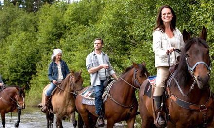Horseback Trail Ride for One or Trail Ride with Wine for Two or Four at The Ranch at Bandy Canyon (Up to 57% Off)