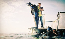 Confined Water Scuba Course for One or Two, or an International Scuba-Certification Course at DiveAqua (Up to 59% Off)