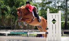 Two Private Horseback-Riding Lessons at Ascot Farm (51% Off)