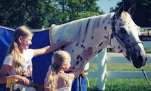 $16 for One-Day Admission for an Adult and Child to BreyerFest Denim and Diamonds at Kentucky Horse Park ($32 Value)