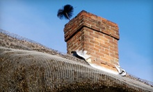 Chimney Sweeping or Air-Duct Cleaning from Twin Cities Furnace Cleaning in St. Paul (Up to 54% Off)