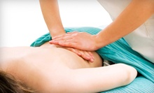 One-Visit or Three-Visit Chiropractic Wellness Package at Faillace Chiropractic (94% Off)