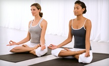 10 or 20 Drop-In Yoga or Prenatal-Yoga Classes at Guru Gayatri Yoga and Meditation Center (Up to 74% Off)