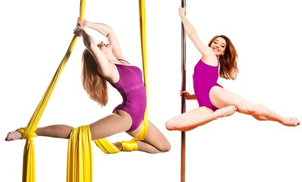 Aerial-Arts or Pole-Dance Workshop for One or Two, or Five Classes at Aerial Arts of Rochester (Up to 56% Off)