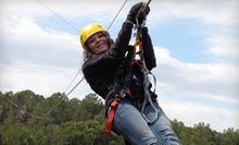 $49 for a Zipline Tour for One from Royal Gorge Zip Line Tours ($98 Value)