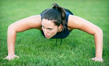 10 or 15 Boot-Camp Classes from The Gym Class (Up to 63% Off)