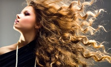 Haircut and Blow-Dry with Optional Partial Highlights or Root Touch-up at M. Evans Salon (Up to 62% Off)