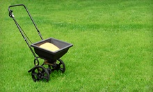 One or Two Months of Lawn Maintenance from Bentgrass Lawn & Landscaping (Up to 62% Off)