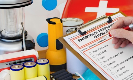 $73 for $125 Worth of CPR and First-Aid Certification Classes — Alert Services