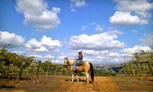 Wine Tasting and 90-Minute Horseback Ride Through Vineyard for One or Two from Vineyard Trail Rides (Up to 57% Off)
