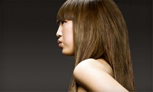 Keratin Treatment with Optional Haircut from Stephen at Elements Hair Studio (Up to 67% Off)