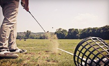 One or Two Golf Lessons at SK Golf Academy (55% Off)